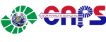 Custom Air Products & Service logo
