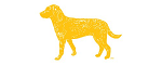 Bird Dog Hospitality logo
