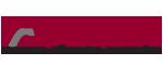 Delta Engineers, Architects, & Surveyors, DPC logo
